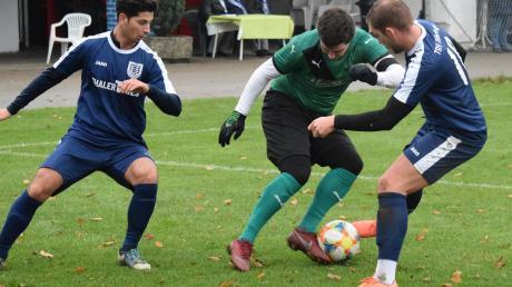 Kein Durchkommen gab es für Lukas Drechsler (Mitte) und den TSV Zusmarshausen. Beim TSV Täfertinger halfen selbst die letzten noch verbliebenen Offensivakteure Deniz Tetik und Paul Stickroth (von links) in der Abwehr aus.