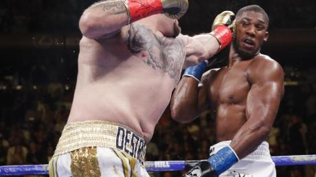 Andy Ruiz besiegte Anthony Joshua Angfang Juni in New York durch Technischen K.o. in der siebten Runde.