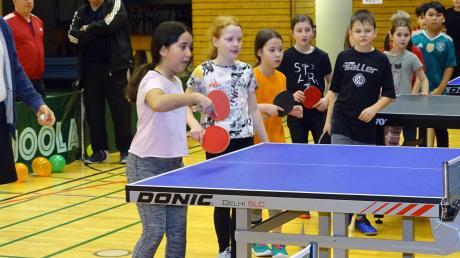 Die Grundschüler beim Tischtennis-Projekt in der Schillerhalle.