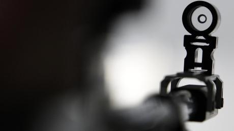 Mit einem Luftgewehr soll der Tatverdächtige auf Pool, Auto und Hund seines Nachbarn geschossen haben.