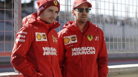 Charles Leclerc (l) und Sebastian Vettel sind bei der Scuderia Ferrari gleichberechtigt.