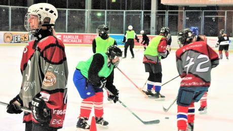 Das Training der Eishockeyspielerinnen vom EHC Ulm/Neu-Ulm.