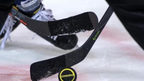 Die Eishockey-Clubs in der DEL hatten ihre Saison abgebrochen.
