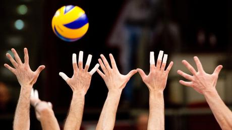 Die Volleyball-Abteilung des SV Salamander Türkheim geht mit jeweils fünf Erwachsenen- und Jugendmannschaften in die neue Spielzeit. Für zwei Herrenmannschaften hatte die Corona-Krise auch Vorteile: Sie hielten die Klasse beziehungsweise stiegen auf.