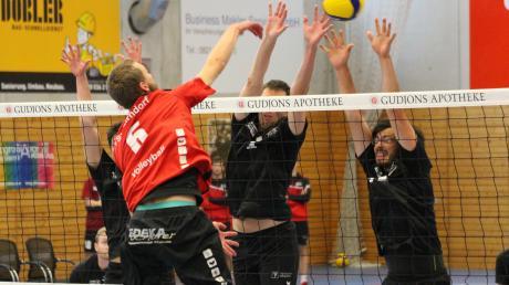 Die Volleyball-Männer des TSV Friedberg (schwarze Trikots) setzen sich bei der Heimpremiere in einem dramatischen Fünfsatz-Match gegen Zirndorf durch und feiern den ersten Sieg der neuen Spielzeit.