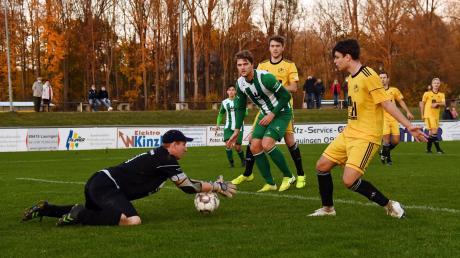 FCL-Keeper Manuel Kohout hat das Leder sich. Im Hintergrund lauert FCGler Christoph Schnelle (Mitte), bewacht von Simon Weber (rechts Janik Schreitmüller). Lauingen siegte im Ligapokalspiel daheim mit 2:1-Toren.