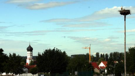 Hoch oben auf dem selbst gefertigten Mast von Landwirt Karl Zacher thront seit einiger Zeit ein Storchenpaar.