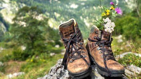 Wander Mit 3 Titelbild