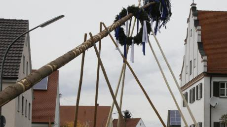 Vor allem beim traditionellen Aufstellen des Maibaums mit Scheren braucht es viele Hände. In den Landkreisen Neu-Ulm und Günzburg wurden jetzt unterschiedliche Regelungen dafür veröffentlicht.