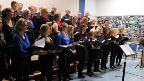 """Der Theaterchor Villenbach und """"MixDur"""" gaben das Konzert """"Mit Vergnügen"""". Zum Abschluss sangen beide Chöre unter der Leitung von Petra Dietrich (rechts) gemeinsam den """"Musikantenkanon""""."""