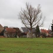 Das Erscheinungsbild von Gottmannshofen wird sich wohl verändern.