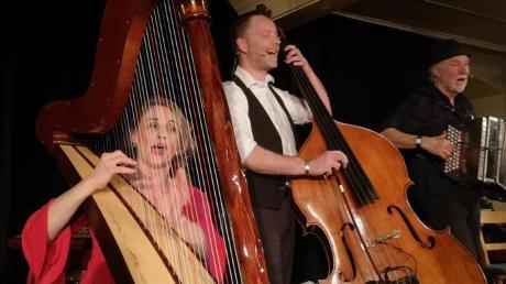 """""""Jodelwahnsinn"""" in Pfaffenhofen: (von links) Geli Huber an der Harfe, Tobi Andrelang am Kontrabass und Otto Göttler an der Diatonischen Ziach begeisterten das Publikum im Gasthaus Straub."""