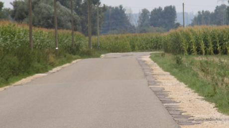 Dass die Ortsverbindungsstraße zwischen Retingen und Pfaffenhofen ausgebaut und saniert werden muss, darüber sind sich die Menschen einig. Das Wie steht allerdings weiterhin zur Debatte.