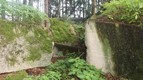 In diesen Überresten eines ehemaligen Bunkers im Hegnenbacher Wald hielt ein Automechaniker aus Villenbach eine 18-Jährige gefangen, die er zuvor geknebelt hatte. Die Taten ereigneten sich vor 40 Jahren.