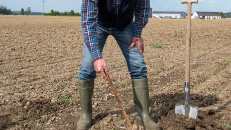"""""""Wer einen besseren Boden hat und im Gegenzug einen schlechteren erhält, bekommt mehr Fläche.""""Seit 30 Jahren ist Günter Häußler aus Binswangen als Bodenschätzer in Schwaben unterwegs. Zehn Jahre zuvor war er schon Hagelschätzer. Nun wird der Binswanger ausgezeichnet."""