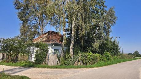 Beim alten Wertinger Wasserhäusle, das am Radweg von Binswangen nach Höchstädt liegt, wird eine Rastbank aufgestellt. Der Blick soll Richtung Reutenhof gehen.