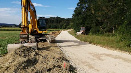 Im Rahmen des Wegebaus im Donauried zwischen Unterthürheim und Pfaffenhofen sollen artenreiche Biotope beschädigt worden sein, sagen örtliche Naturschützer.