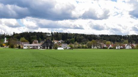 """Hier könnte das Binswanger Baugebiet """"Südwestlich der Dillinger Straße"""" entstehen. Der Gemeinderat hat den Aufstellungsbeschluss beschlossen und eine Veränderungssperre erlassen."""