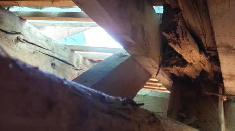 Dieser zersplitterte Dachsparren gibt Rätsel auf. Rechts und links davon sind die Auflaschungen zu erkennen.