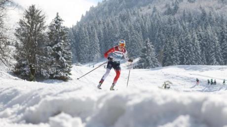 Die Norwegerin Therese Johaug hat bereits 14 WM-Goldmedaillen gewonnen.