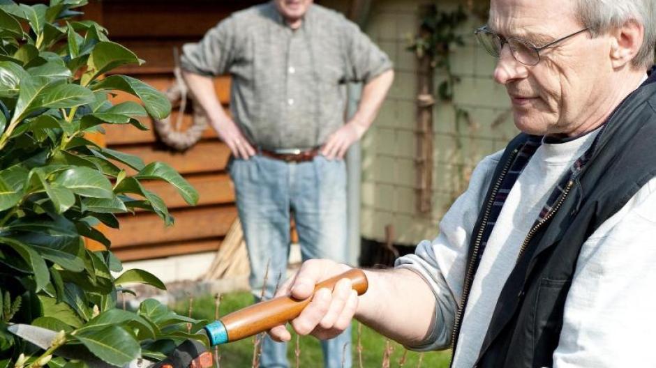 Klettergerüst Abstand Grundstücksgrenze : Recht: abstände für pflanzen: streit am gartenzaun vermeiden