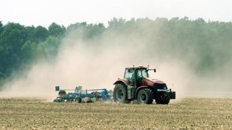 Lange vor der Corona-Krise haben viele Bauern ums Überleben gekämpft.