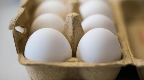 Ein Mann hat in Möttingen sechs Packungen Eier gestohlen.