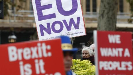 In Großbritannien gehen die Meinungen auseinander: Sowohl Brexit-Gegner als auch Austritts-Befürworter gehen regelmäßig auf die Straße.