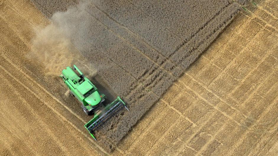 Atemberaubend Getreideernte: Das Getreide wird weltweit knapp, die Preise &PY_23