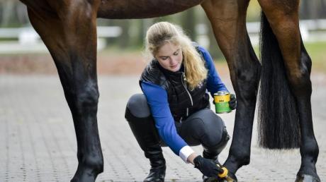 Die angehende Pferdewirtin Katharina Grupen kümmert sich gern um Tiere.