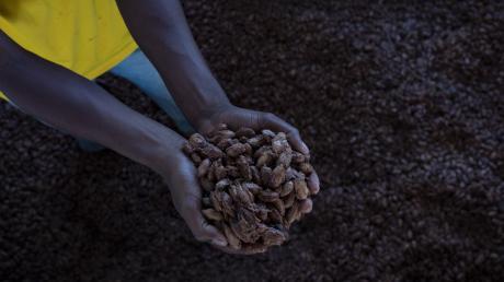 Nach Zahlen aus dem Entwicklungsministerium landet oft nur ein Bruchteil dessen, was ein Produkt im Handel kostet, bei den Produzenten: 50 Cent pro Pfund Kaffeebohnen, 14 Cent pro Kilo Bananen und nur sieben Cent pro Tafel Schokolade.