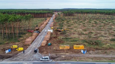 Blick auf das schon teilweise gerodete Waldgebiet auf dem künftigen Gelände der Tesla Gigafactory.