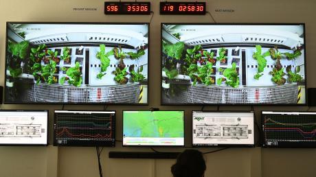 Ein Gewächshaus fürs All schwebt demDeutschen Zentrum für Luft- und Raumfahrt vor, um Astronauten auf dem Mond oder Mars ernähren zu können. Der Prototyp könnte in fünf Jahren fertig gebaut sein.
