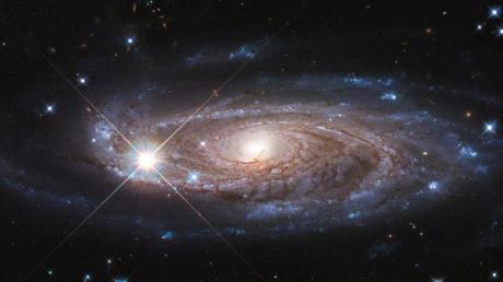 Eine undatierte Aufnahme des Hubble-Weltraumteleskops zeigt die riesige Spiralgalaxy UGC 2885, die rund 232 Million Lichtjahre von uns entfernt liegt.
