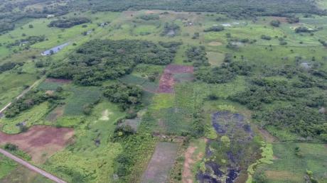 Luftaufnahme von Aguada Fénix mit Dämmen und Stauseen vorne und dem Hauptplateau hinten. Im Süden von Mexiko haben Archäologen die älteste und gleichzeitig größte bisher bekannte Monumentalanlage der Maya entdeckt.