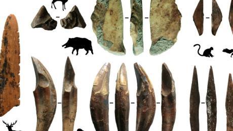 Werkzeuge aus Knochen und Zähnen sind Teil archäologischer Funde, die auf Sri Lanka gemacht wurden.